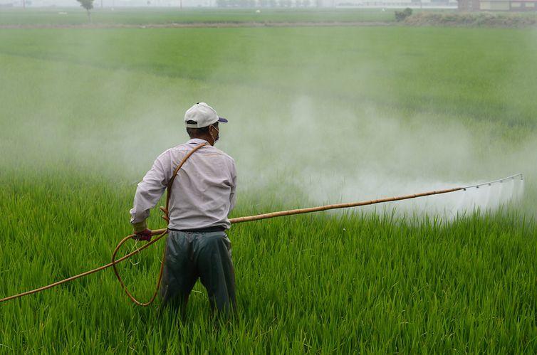 Saúde lança plano estadual de atenção à pessoas expostas a Agrotóxicos