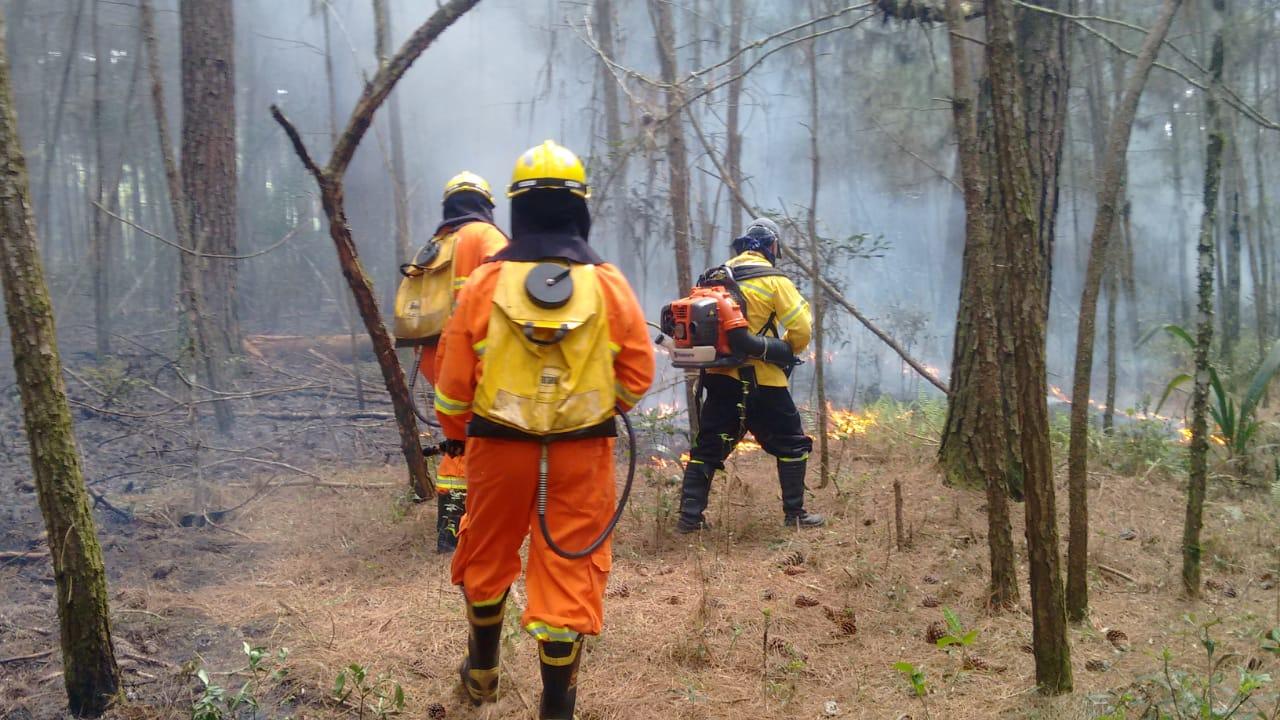 Planalto Norte SC têm registros de incêndios florestais e Bombeiros alertam para a prevenção