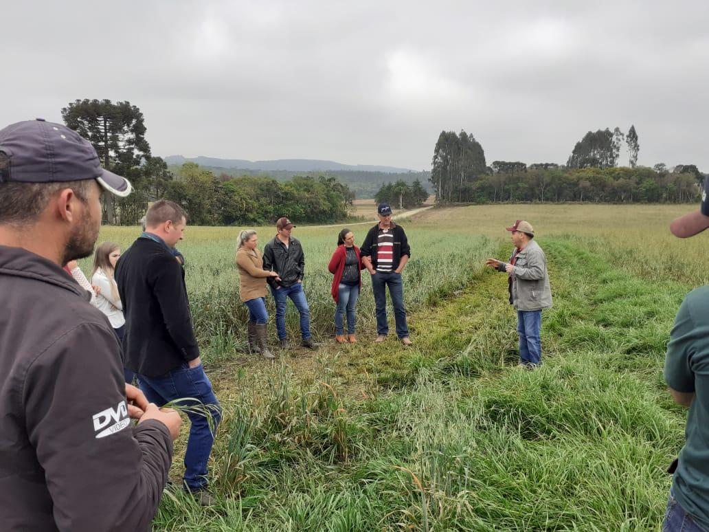 Rio Azul organiza atividade técnica, com produtores de leite, abordando a silagem