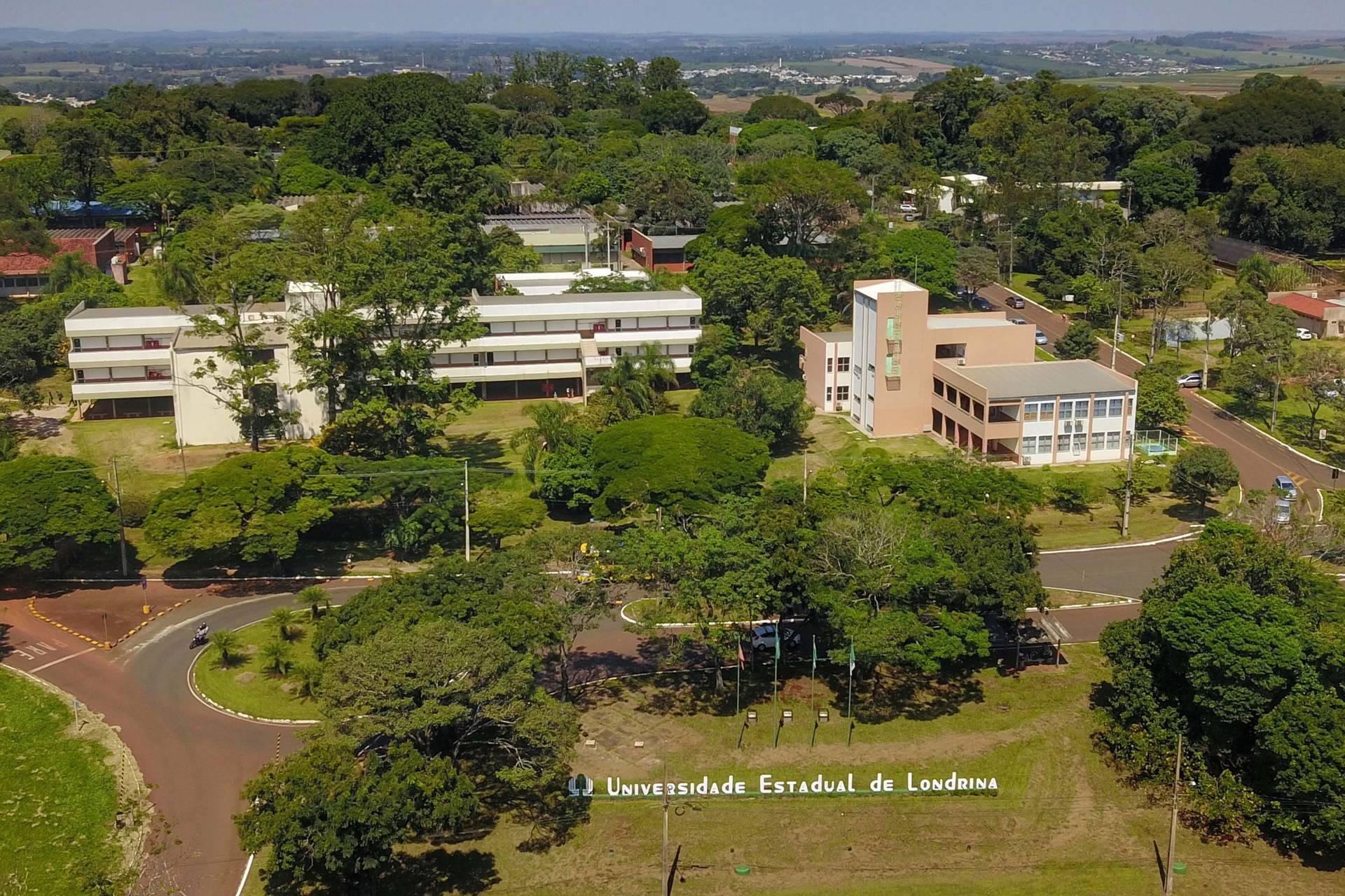 Universidades públicas do Paraná têm nota máxima no Enade
