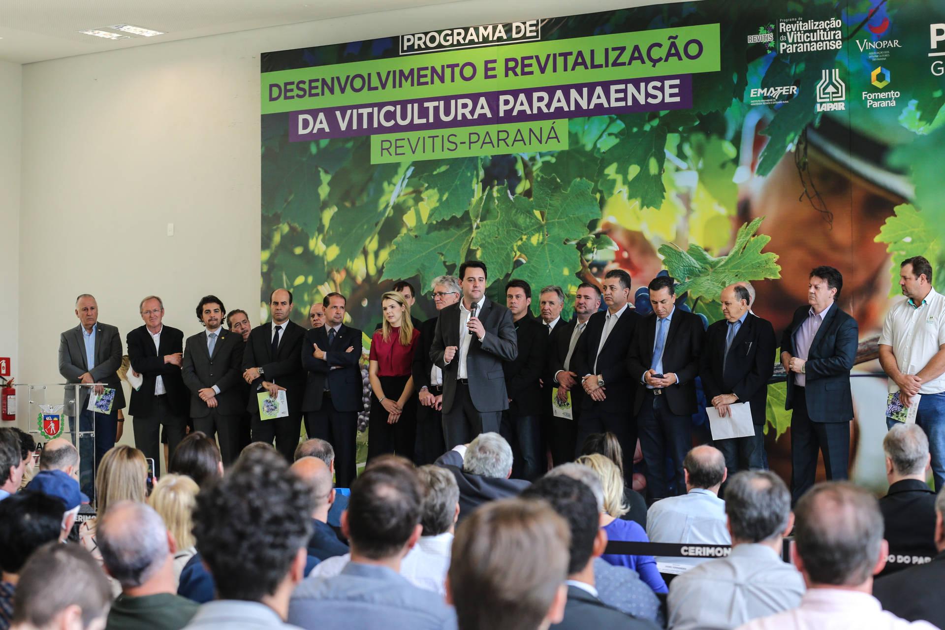 Bacil acompanha lançamento de Programa Estadual de apoio ao setor de produtivo de uvas