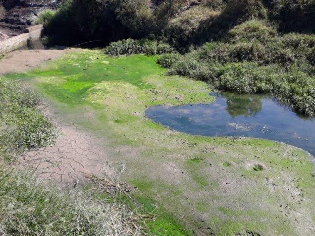 Palmeira terá rodízio no abastecimento de água devido a baixa vazão do rio Pugas