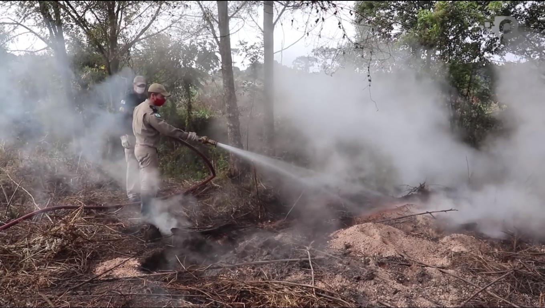 MISTÉRIO: Serraria desativada em 1943 pode ser origem de fogo subterrâneo em São Mateus do Sul