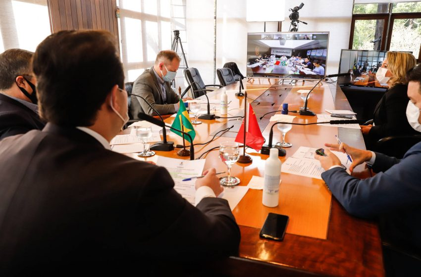 Governo discute parceria para produzir vacina contra a Covid no Paraná