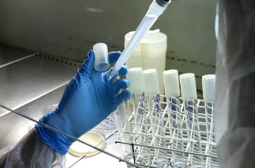 Tecpar busca parceria para produção de canabinoides