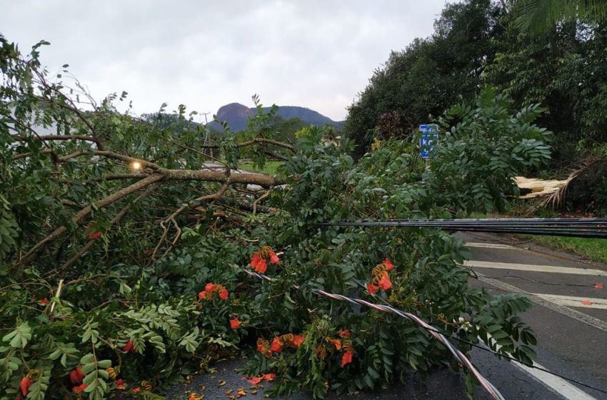 Região Sul volta a entrar em alerta devido a risco de novos temporais