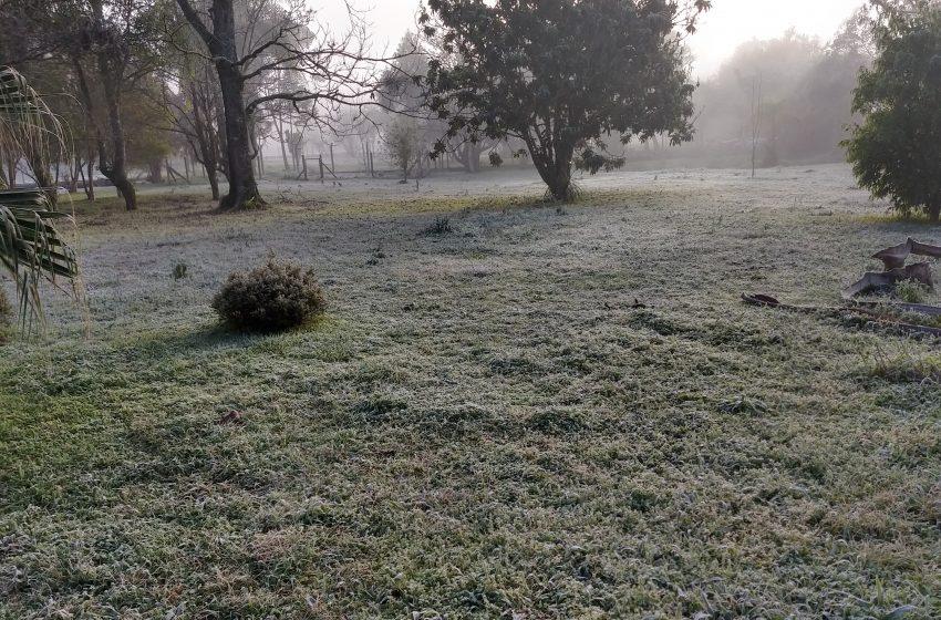 Frio intenso continua até segunda-feira (24), em São Mateus do Sul e região