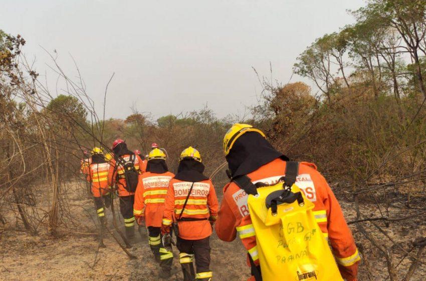 Bombeiros do Paraná completam dez dias de combate a incêndios no Pantanal