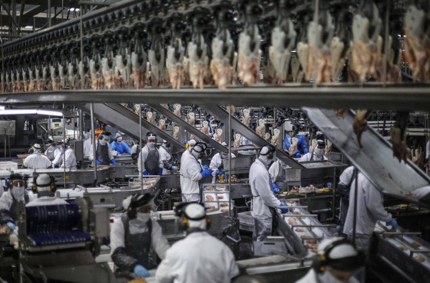 Paraná tem o maior crescimento industrial do País em outubro