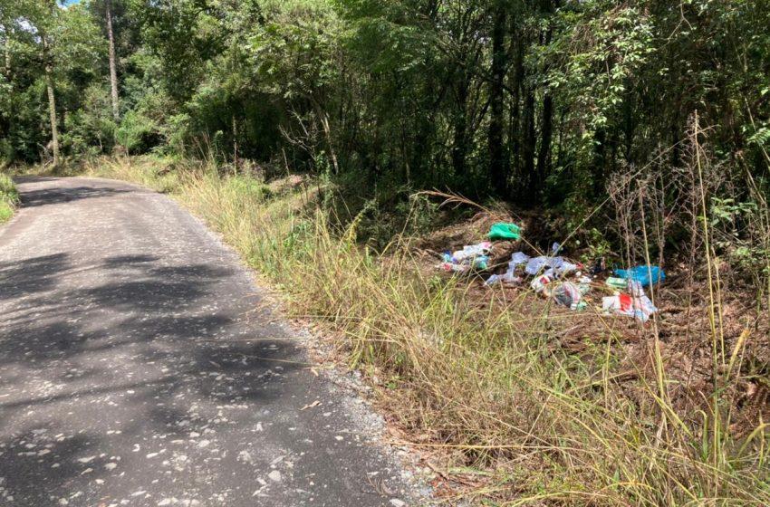 Crime ambiental: lixo jogado às margens da rodovia pode dar cadeia