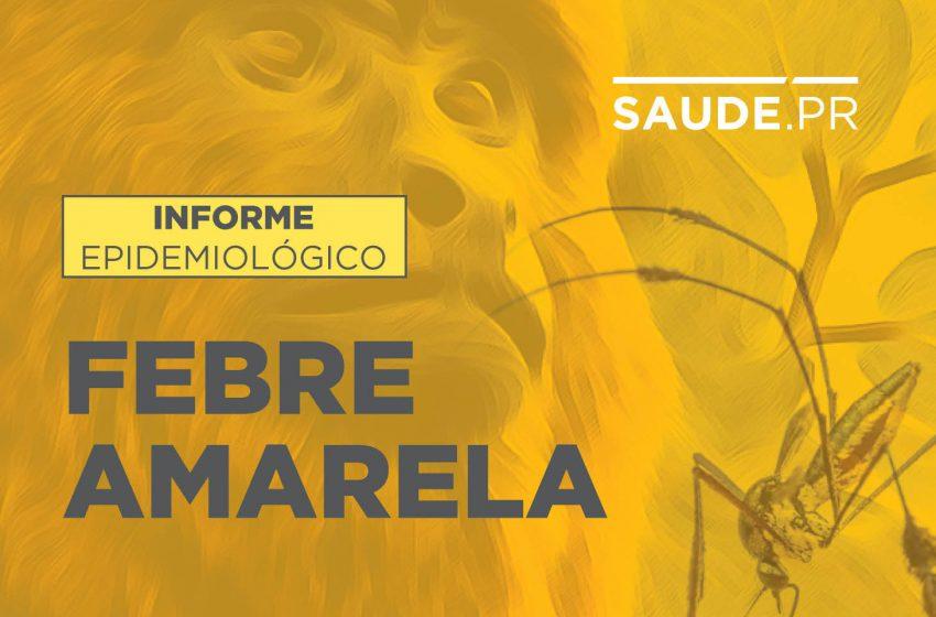 Saúde registra morte de macaco por febre amarela