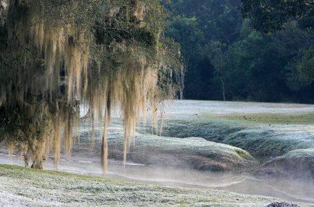 Temperatura negativas estão previstas para a próxima semana em São Mateus do Sul