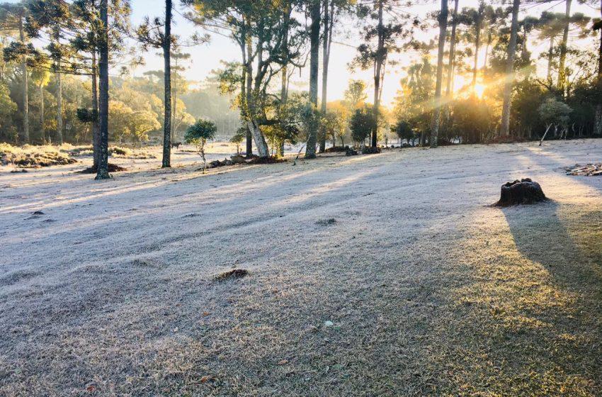 Frio começa a dar trégua, mas pode voltar com força na metade de agosto em todo Paraná
