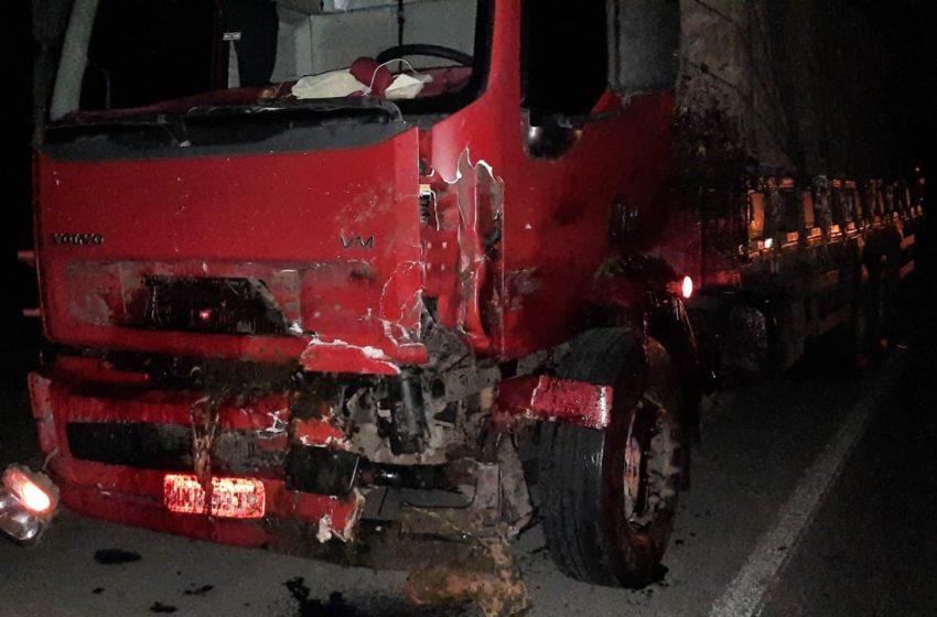 Cavalos soltos na BR-476 provocam acidente em São Mateus do Sul