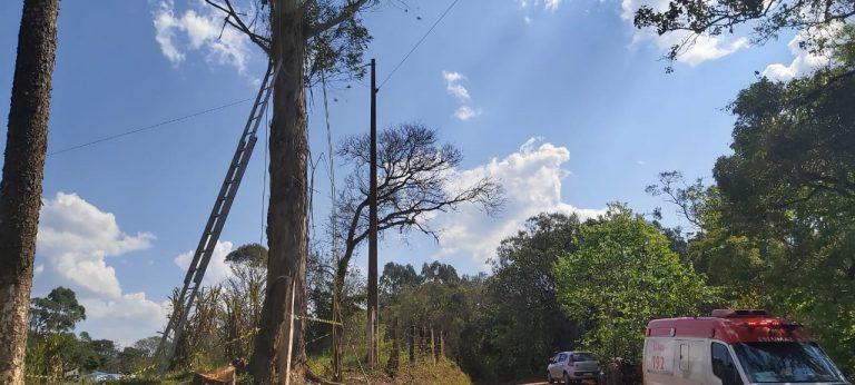 Homem morre eletrocutado enquanto realizava podas de árvores em Ponta Grossa