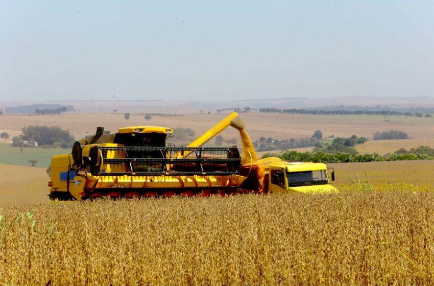 Clima irregular atrasa o plantio da soja no Paraná