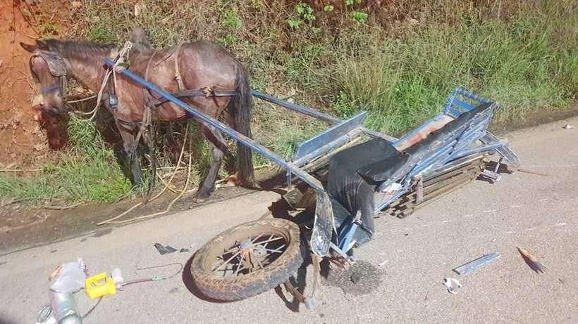 Criança de 10 anos morre em acidente entre moto e charrete em Minas Gerais