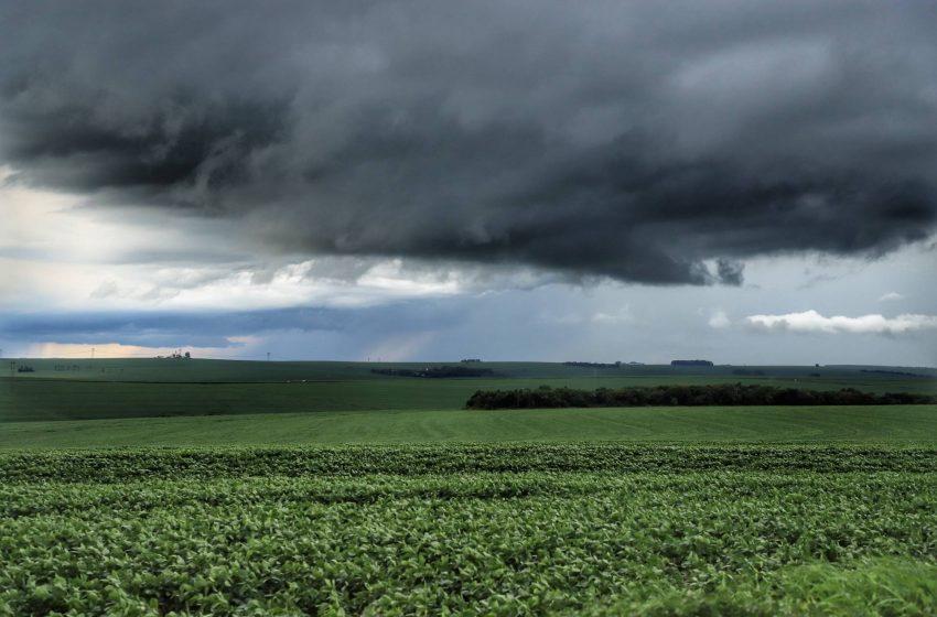 Chuvas retornam ao Estado e oferecem melhores condições de plantio, segundo boletim